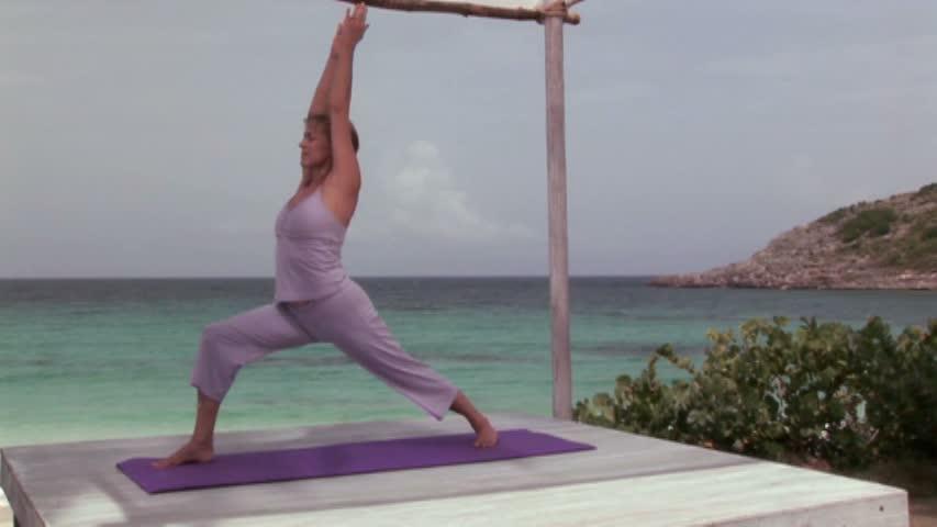 Using Barbara Benagh S Yoga For Beginners A T I S H E H
